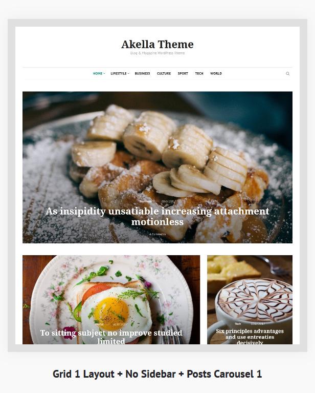 Akella - Personal Blog & Magazine WordPress Theme - 3